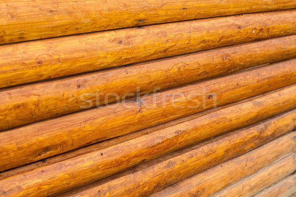 View of log wall Stock photo © dmitroza