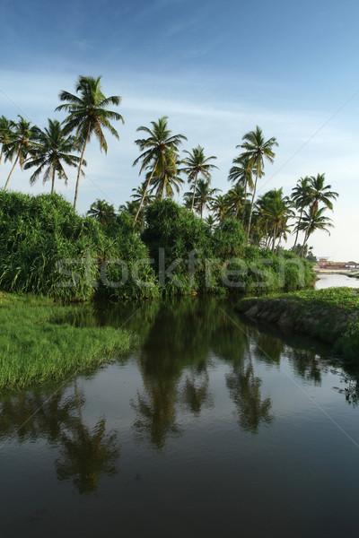 Coco palms água tropical nublado blue sky Foto stock © dmitroza