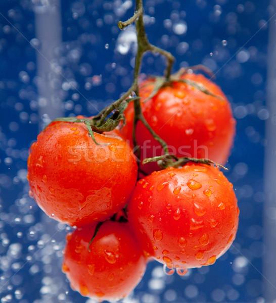 Vers tomaat Rood druppels water plantaardige Stockfoto © dmitroza