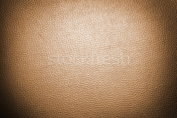 Leder bruin huid koe kleur Stockfoto © dmitroza