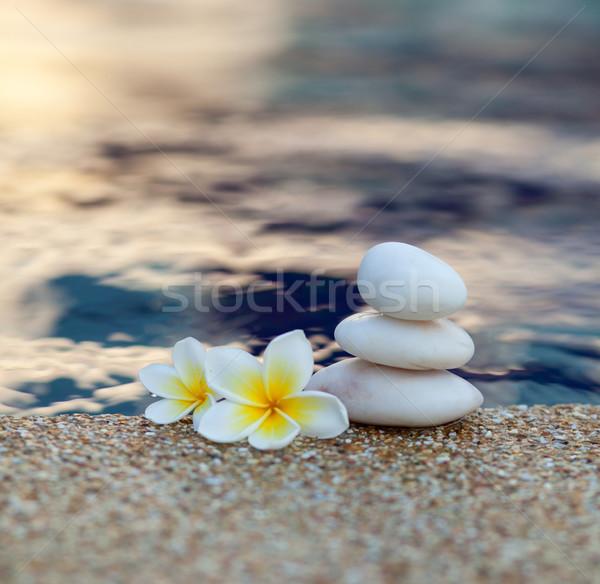 Drie stenen bloemen water zand evenwicht Stockfoto © dmitroza