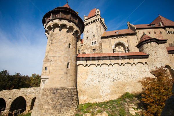 Old castle with towers Stock photo © dmitroza
