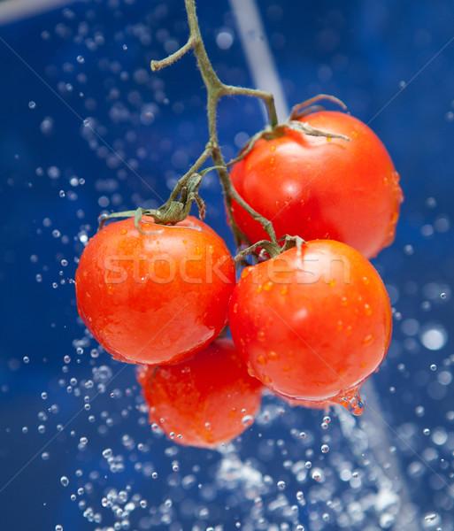 Vers tomaat Rood druppels water natuur Stockfoto © dmitroza