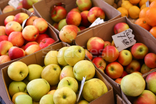 Ripe fruits Stock photo © dmitroza