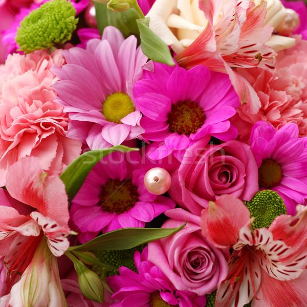 Bloemen verschillend voorjaar groep kleur Stockfoto © dmitroza