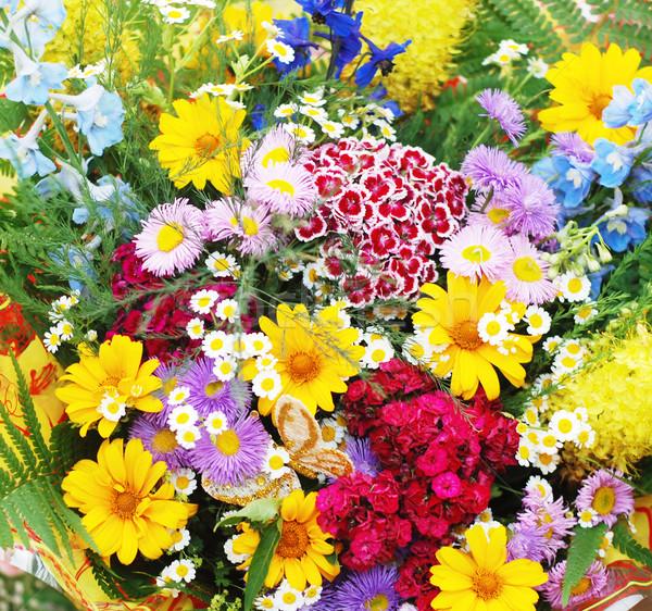 Bouquet Stock photo © dmitroza