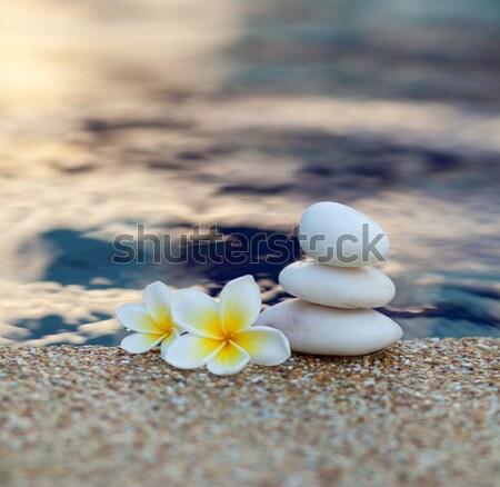 Bloem stenen witte water zwembad Blauw Stockfoto © dmitroza