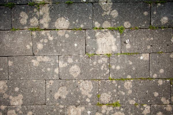 Slag block ground surface Stock photo © dmitroza
