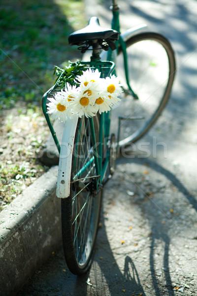 Old bicycle Stock photo © dmitroza