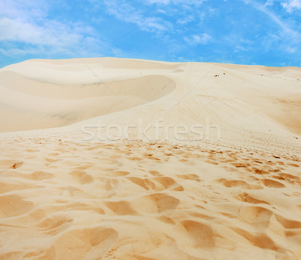 Loneliness in a desert Stock photo © dmitroza