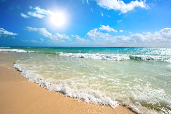 Belle plage mer vagues Caraïbes été Photo stock © dmitry_rukhlenko