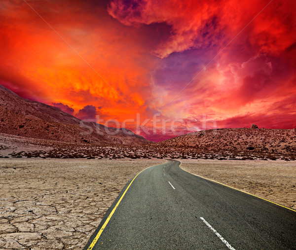 Road in desert Stock photo © dmitry_rukhlenko