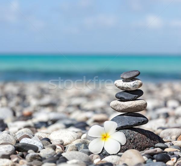 Zen сбалансированный камней цветок медитации Сток-фото © dmitry_rukhlenko