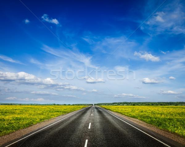 Road in blooming spring meadow Stock photo © dmitry_rukhlenko