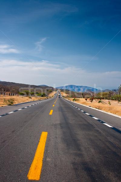 Road in desert  Stock photo © dmitry_rukhlenko