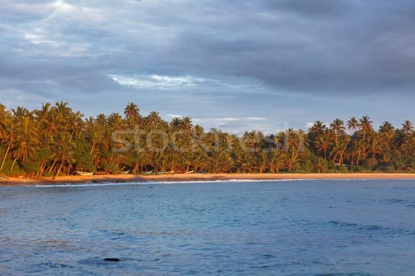 Foto stock: Pesca · barcos · playa · puesta · de · sol · Sri · Lanka · cielo