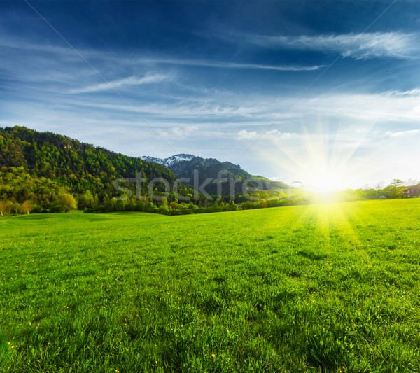 Alpine meadow in Bavaria,  Germany Stock photo © dmitry_rukhlenko