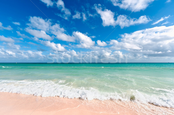 Beautiful beach and sea Stock photo © dmitry_rukhlenko