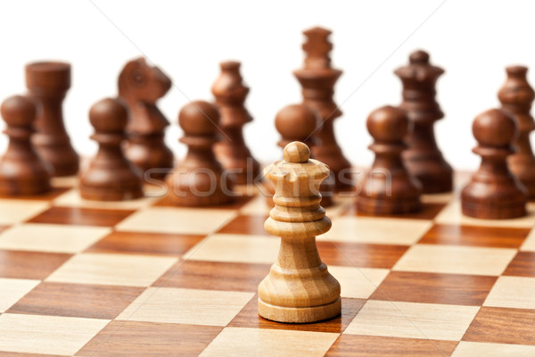Chess - one agains all Stock photo © dmitry_rukhlenko