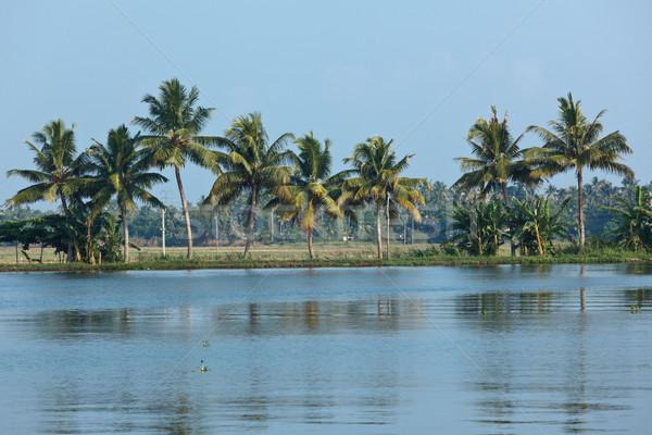 Kerala backwaters Stock photo © dmitry_rukhlenko