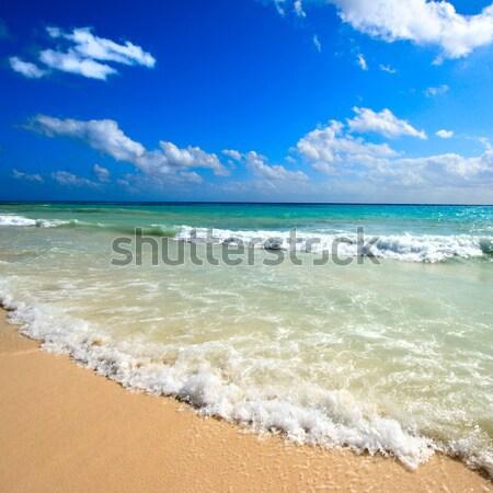 Belo praia mar ondas caribbean verão Foto stock © dmitry_rukhlenko