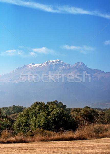 Popocatepetl  volcano in Mexico Stock photo © dmitry_rukhlenko