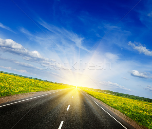 Stock photo: Road in blooming spring meadow
