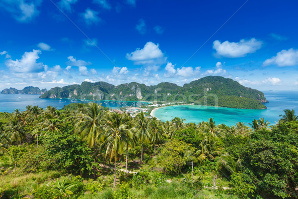 Green tropical island  Stock photo © dmitry_rukhlenko