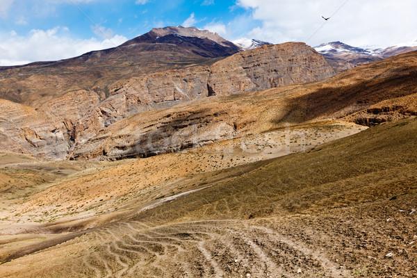 Stockfoto: Vallei · bergen · natuur · landschap
