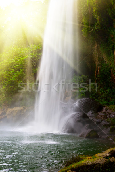Waterfall in jungles with sun Stock photo © dmitry_rukhlenko