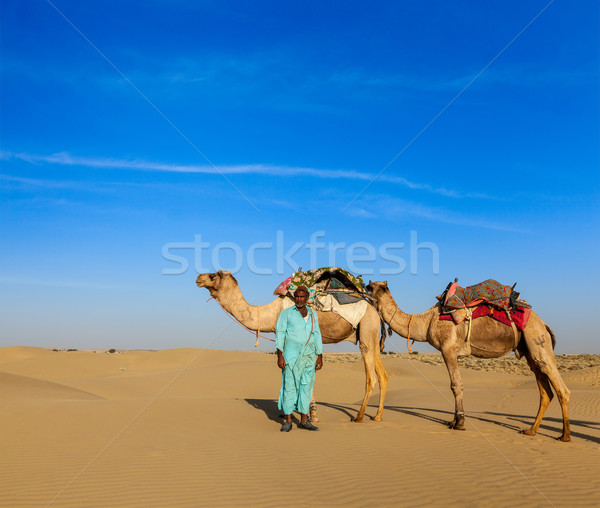 Chameau pilote chameaux Inde Voyage indian Photo stock © dmitry_rukhlenko