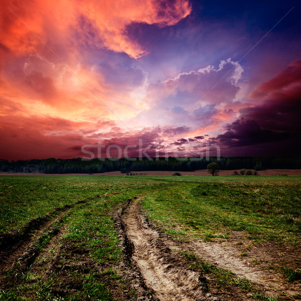 Countryside landscape with dirt  road Stock photo © dmitry_rukhlenko