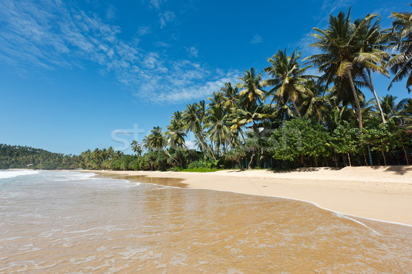 Idyllique plage Sri Lanka tropicales paradis arbre Photo stock © dmitry_rukhlenko