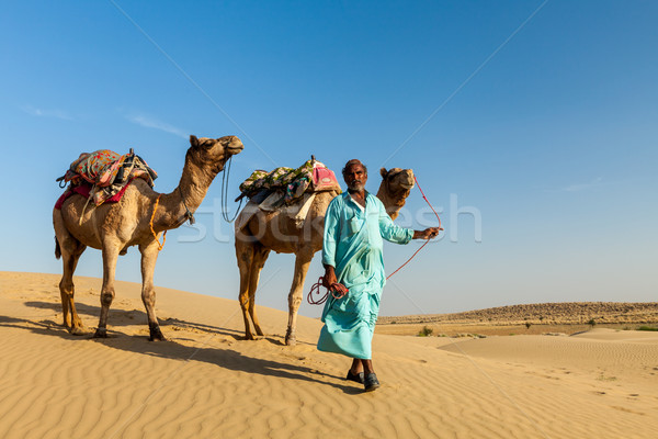 Cameleer (camel driver) with camels in dunes of Thar desert. Raj Stock photo © dmitry_rukhlenko