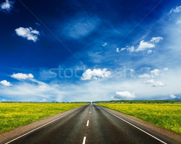 Road in blooming spring meadow Stock photo © dmitry_rukhlenko