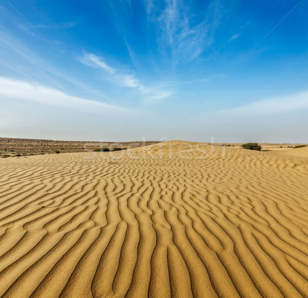 Dunes of Thar Desert, Rajasthan, India Stock photo © dmitry_rukhlenko