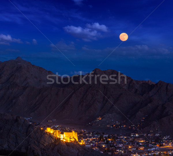 Nacht Indië stad paleis himalayas Stockfoto © dmitry_rukhlenko