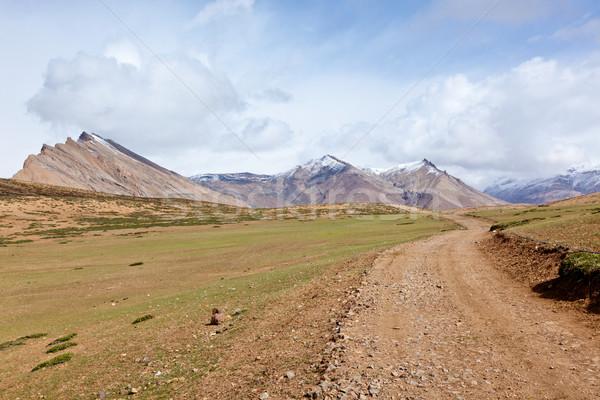 Weg himalayas bergen vallei natuur Stockfoto © dmitry_rukhlenko