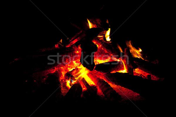 Kampvuur brand hout licht vlammen duisternis Stockfoto © dmitry_rukhlenko