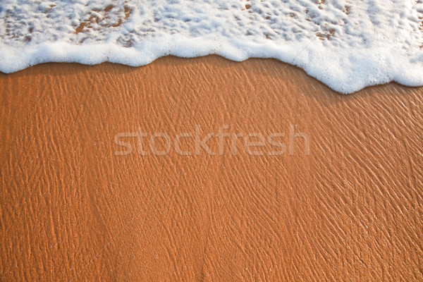 Wave surging on sand Stock photo © dmitry_rukhlenko