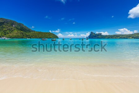 Long tail boats in bay. Thailand Stock photo © dmitry_rukhlenko