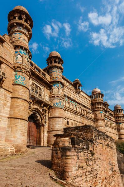 Fort Indië toeristische attractie architectuur hemel steen Stockfoto © dmitry_rukhlenko