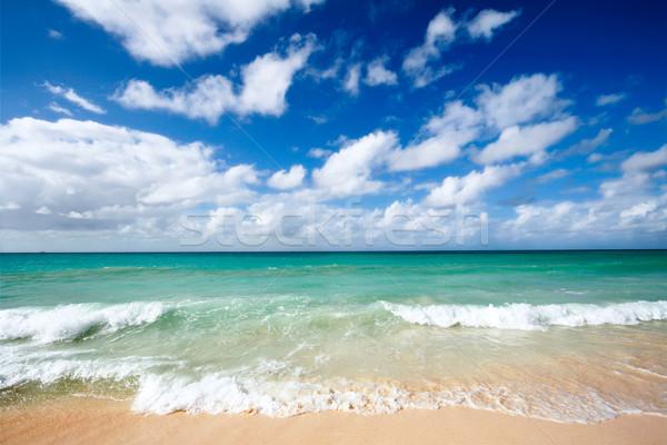Foto stock: Belo · praia · mar · ondas · caribbean · verão