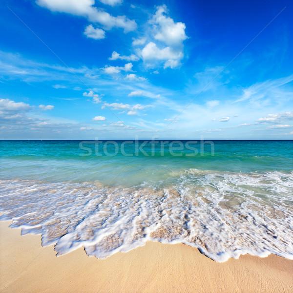 Belle plage mer vague été bleu Photo stock © dmitry_rukhlenko