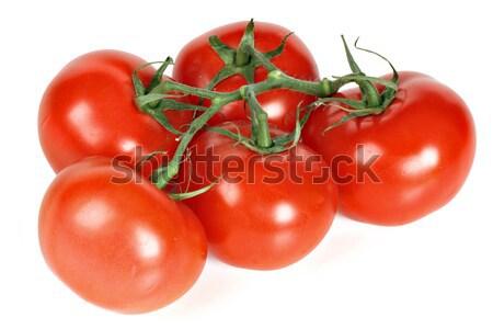 Stock fotó: ág · paradicsomok · izolált · fehér · csoport · piros