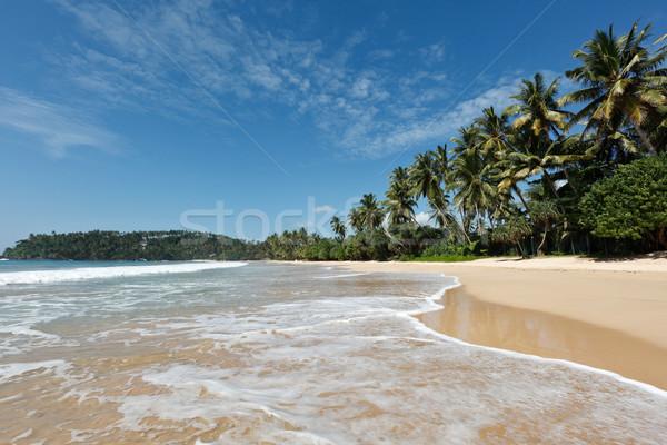 Idyllisch strand Sri Lanka tropische paradijs boom Stockfoto © dmitry_rukhlenko