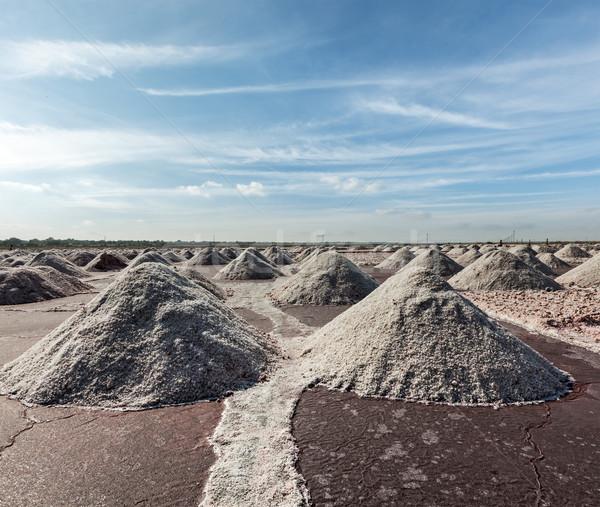 Salt mine at Sambhar Lake, Sambhar, Rajasthan, India Stock photo © dmitry_rukhlenko