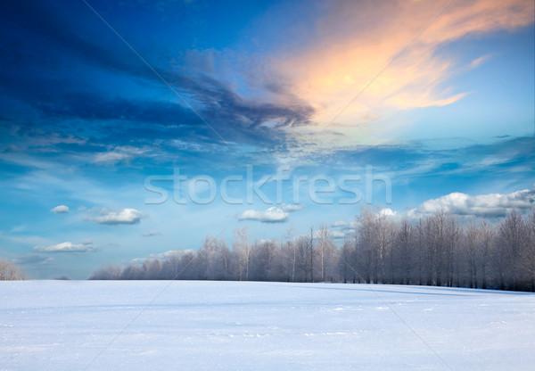 Tél tájkép erdő mező hó Stock fotó © dmitry_rukhlenko