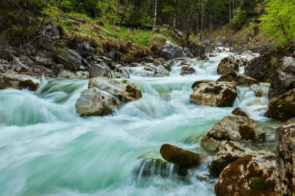 Kaskada długi czas ekspozycji wody lasu charakter Zdjęcia stock © dmitry_rukhlenko