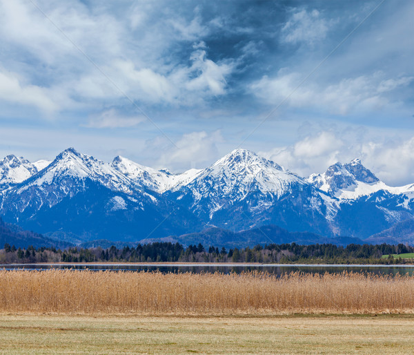 Bavarian Alps countryside landscape Stock photo © dmitry_rukhlenko